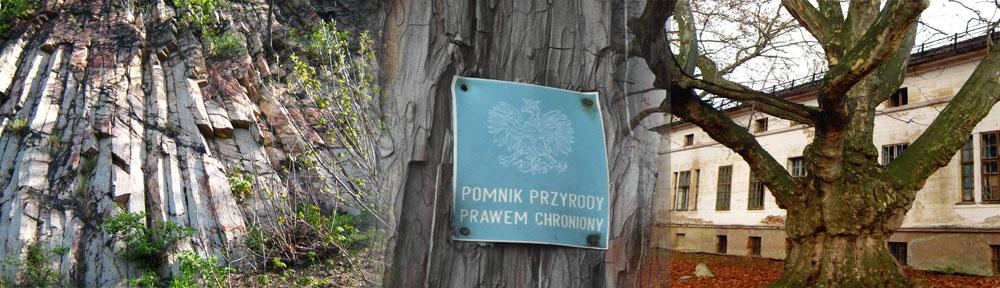 Pomniki przyrody