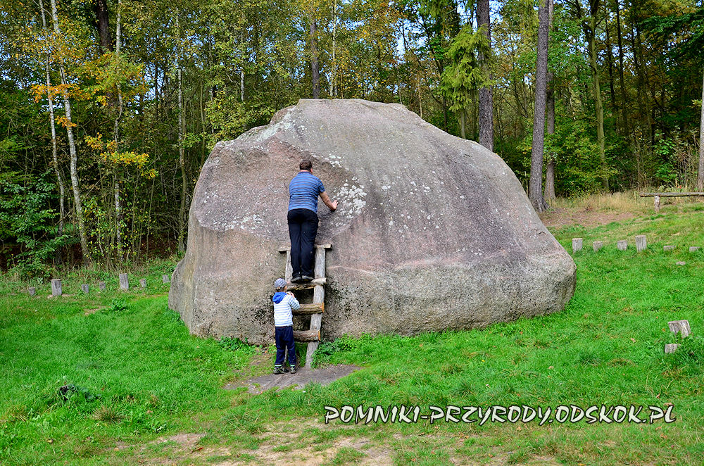 kamień św. Jadwigi k. Gołuchowa