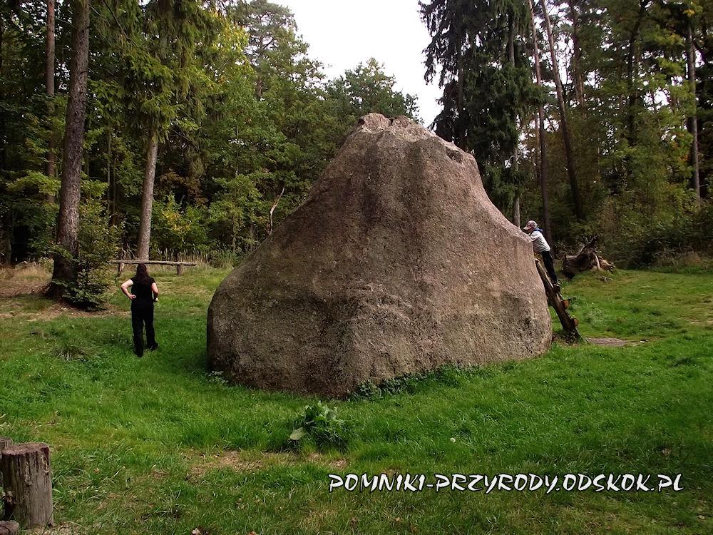 kamień św. Jadwigi - las na południe od Gołuchowa