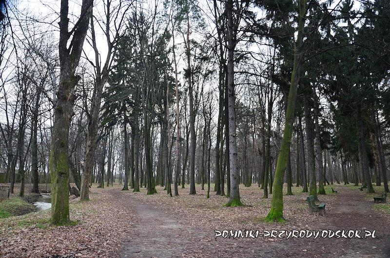 południowa część parku w Jaworze