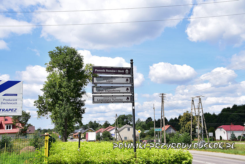 drogowskazy do pomników przyrody w Bełżcu