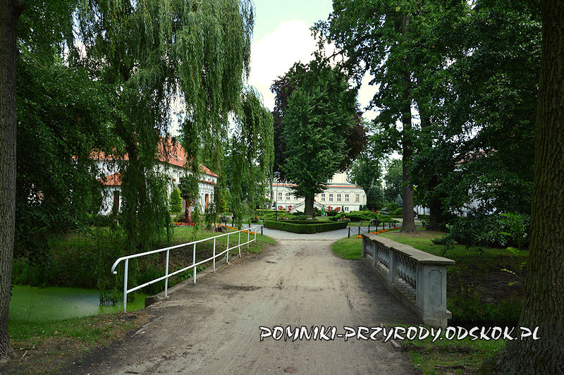 Park Zamkowy we Włoszakowicach