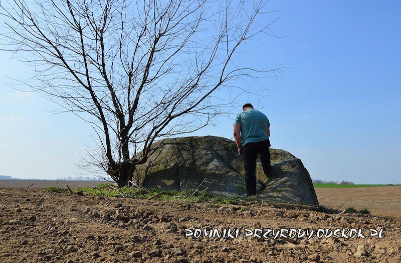 autor artykułu przed pomnikowym głazem w Jezierzycach