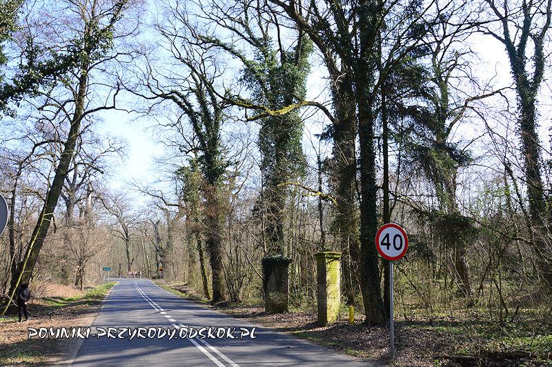 brama parkowa w Żegrowie