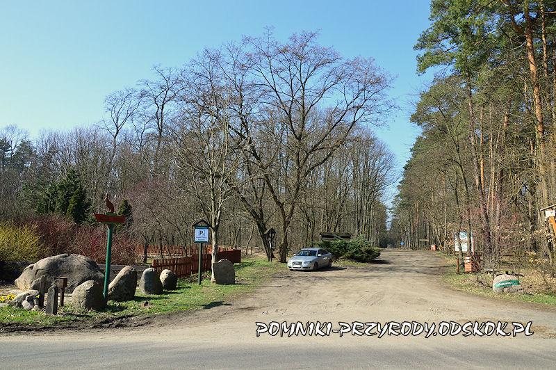 leśny parking przy leśnictwie Krzyżowiec