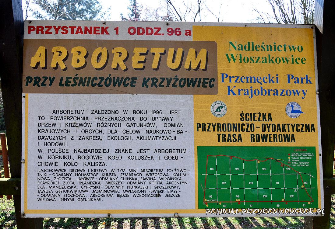 tablica na trasie leśnej ścieżki dydaktycznej