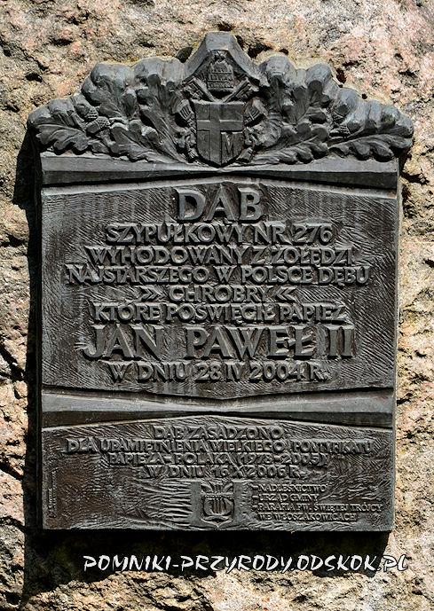 tablica przy Dębie Papieskim we Włoszakowicach
