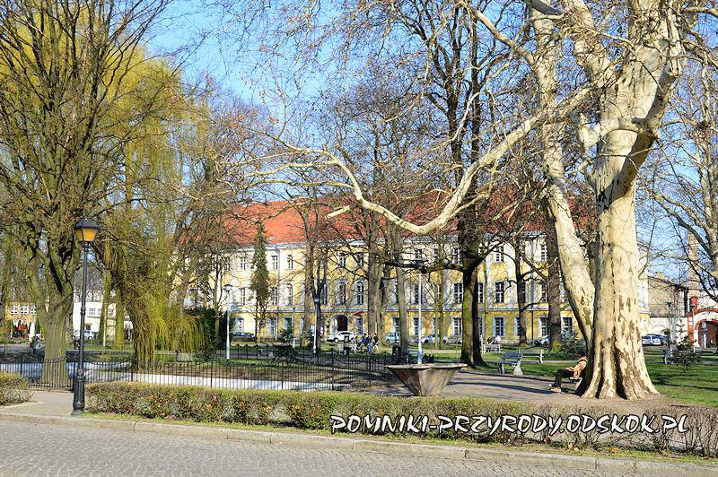 Park Miejski w Lesznie, na drugim planie Pałac Sułkowskich
