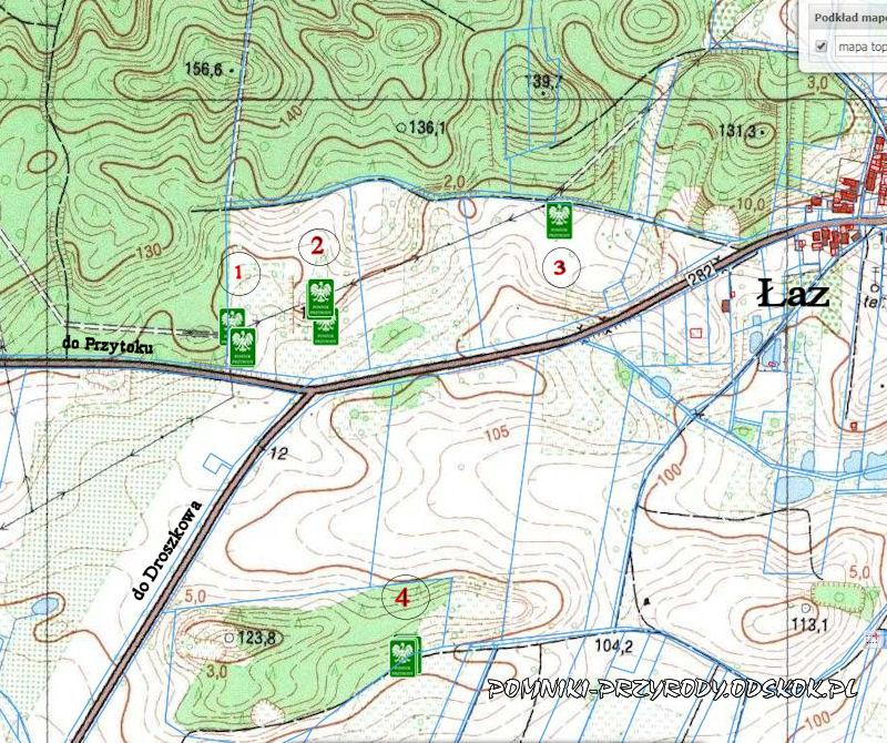 mapa rozmieszczenia pomnikowej winorośli we wsi Łaz
