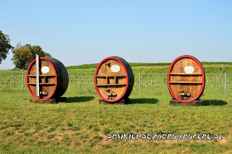 beczki przy Lubuskim Centrum Winiarstwa w Zaborze