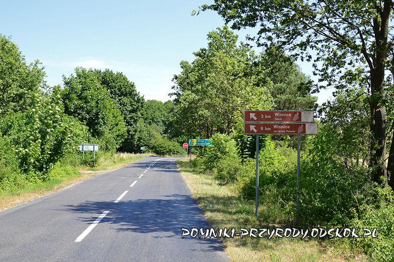 droga wjazdowa do wsi Łaz