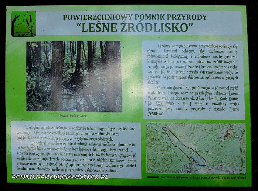 opis pomnika przyrody Leśne Źródlisko