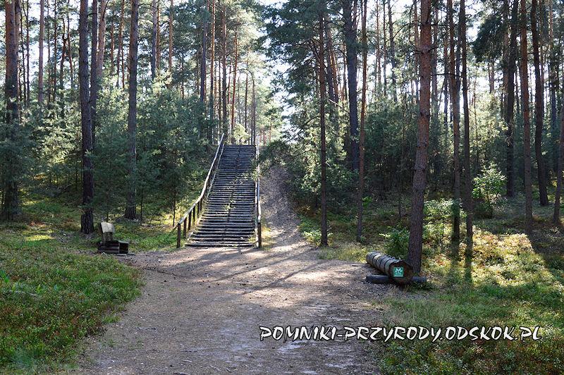 Świętno - schody niedaleko wieży widokowej
