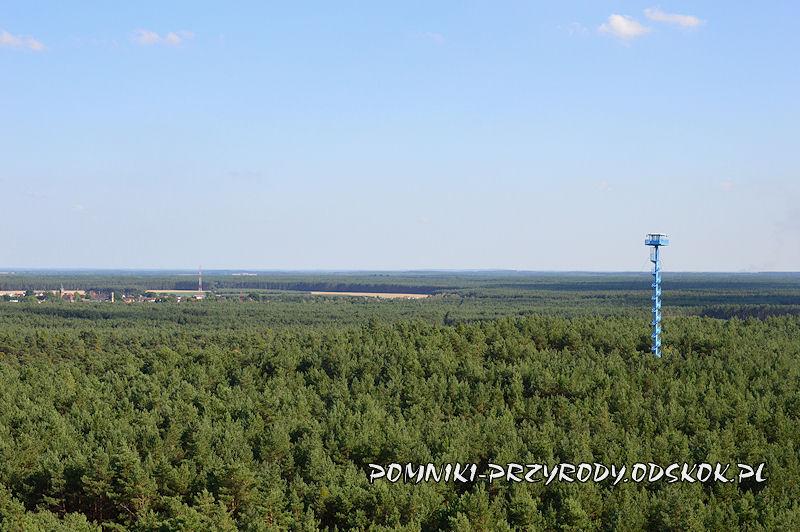panorama z wieży widokowej w Świętnie