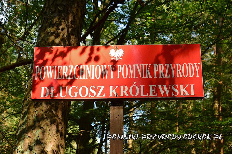 tablica na skraju powierzchniowego pomnika przyrody