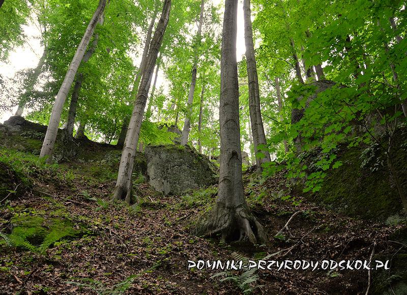 Siedem Sówek - pomnik przyrody nieożywionej