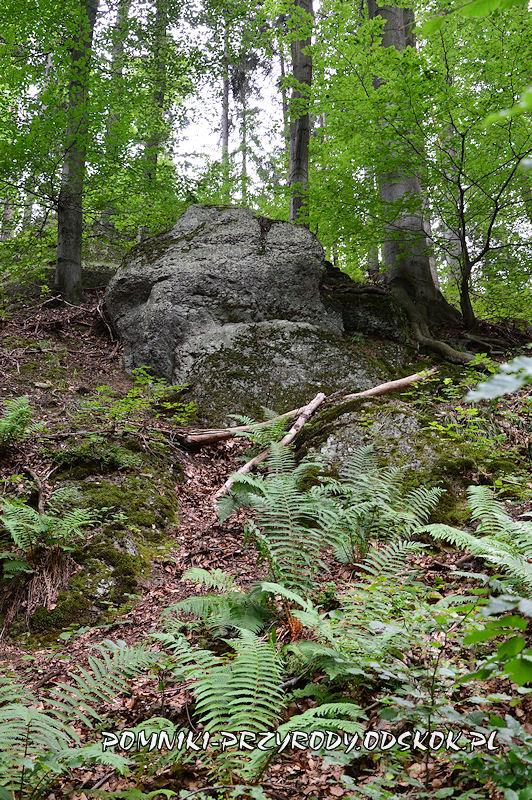 Siedem Sówek - pomnik przyrody