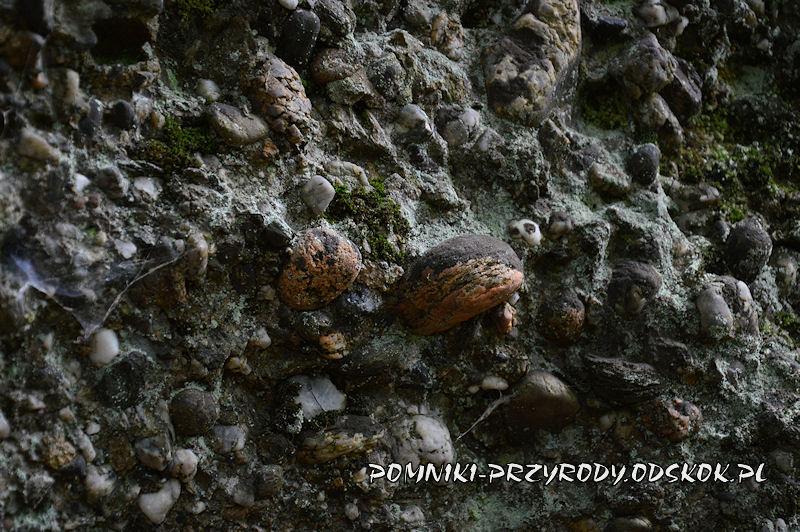 Siedem Sówek - zlepieniec budujący skały