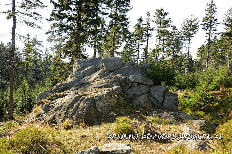 pomnik przyrody Niedźwiedzia Skała