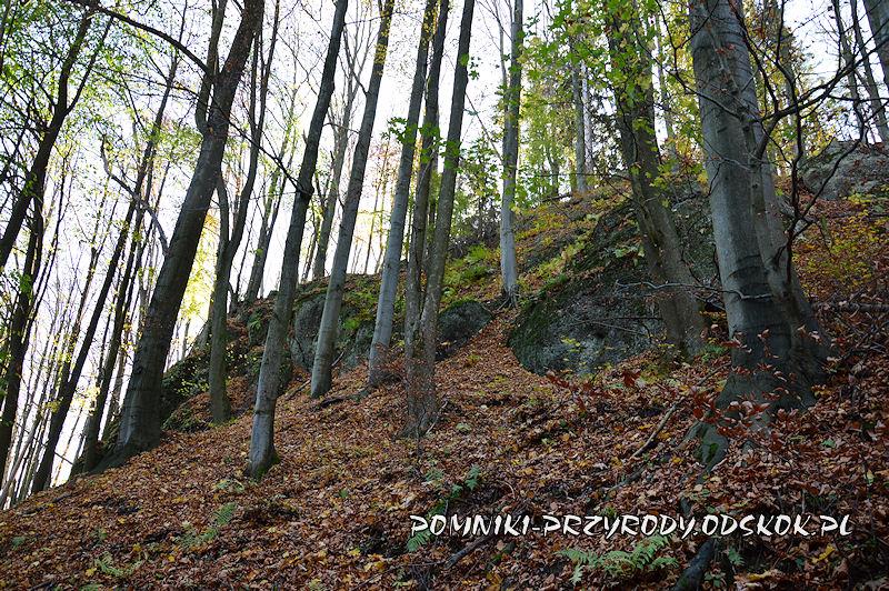 pomnik przyrody Siedem Sówek