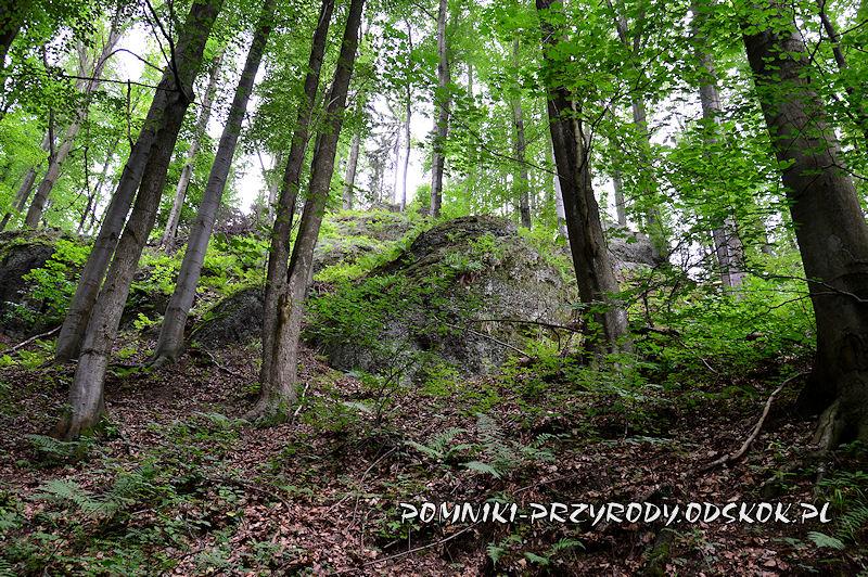 pomnikowa skałka w grupie Siedmiu Sówek