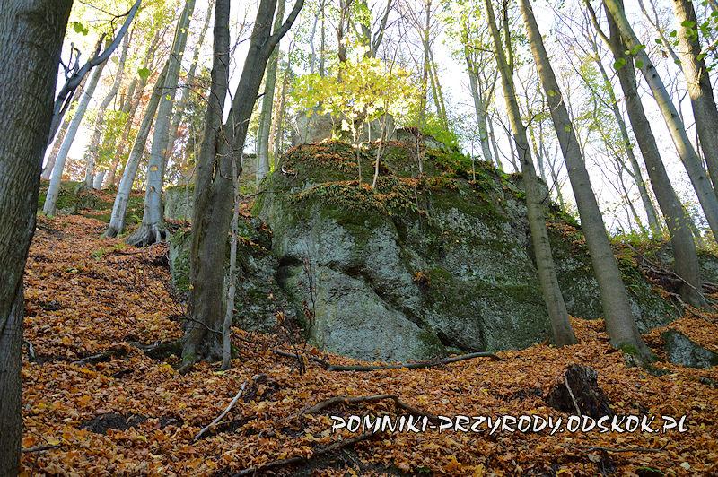 skałka w grupie Siedmiu Sówek