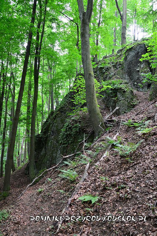skałka zlepieńcowa w grupie Siedmiu Sówek