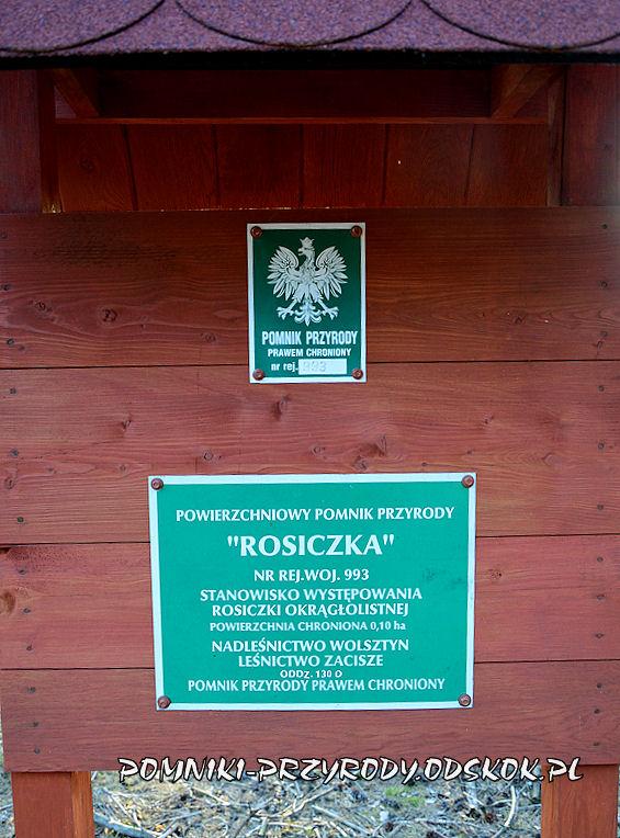 tabliczka przed powierzchniowym pomnikiem przyrody Rosiczka