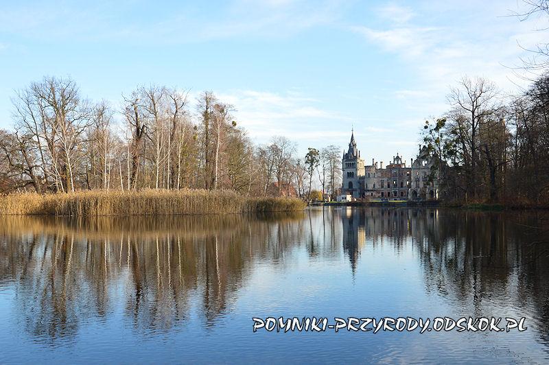 największy staw parkowy w Kopicach