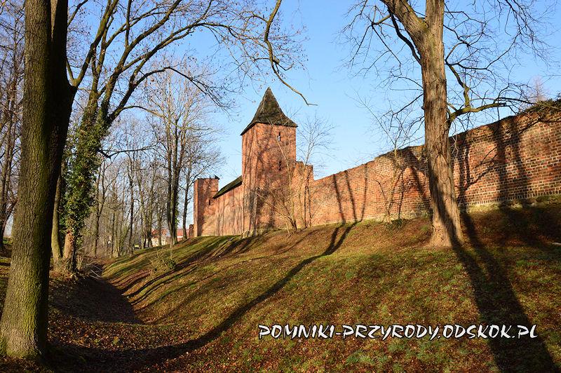 Środa Śląska - fragment murów miejskich przy ul. Basztowej