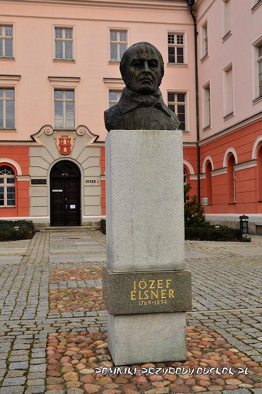 Grodków - pomnik Józefa Elsnera