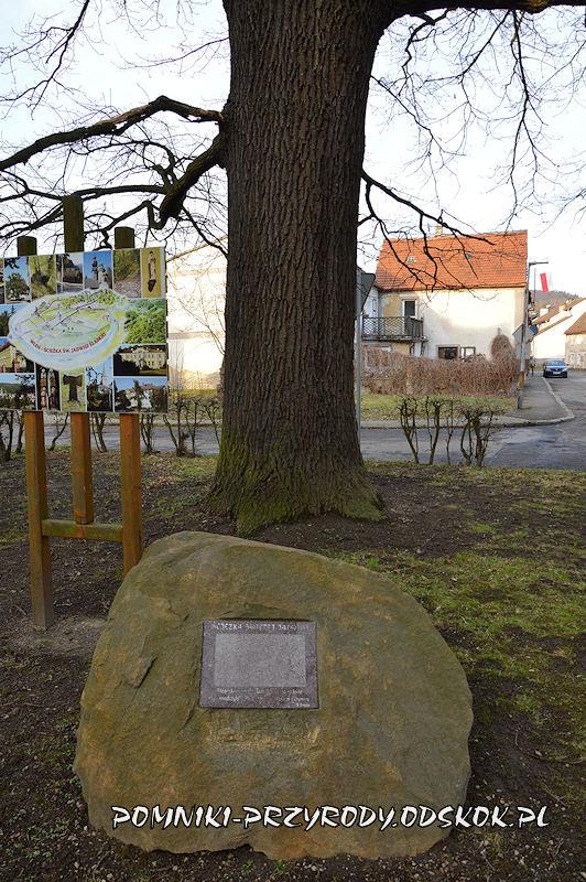 Wleń - głaz trasy dydaktycznej przed Dębem Pokoju