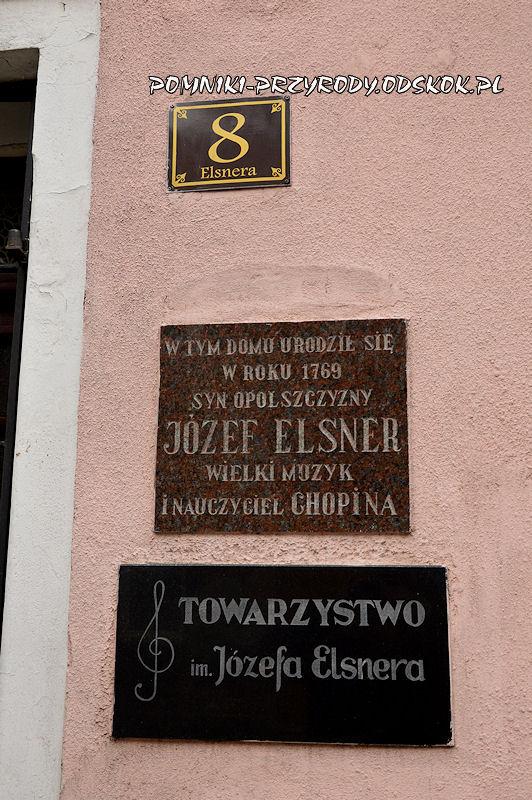 miejsce narodzin Józefa Elsnera