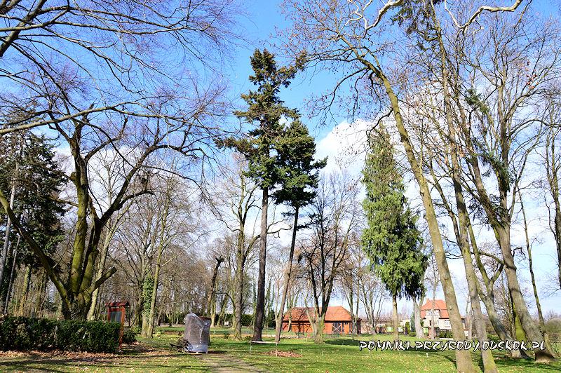 zabytkowy park w Dalkowie