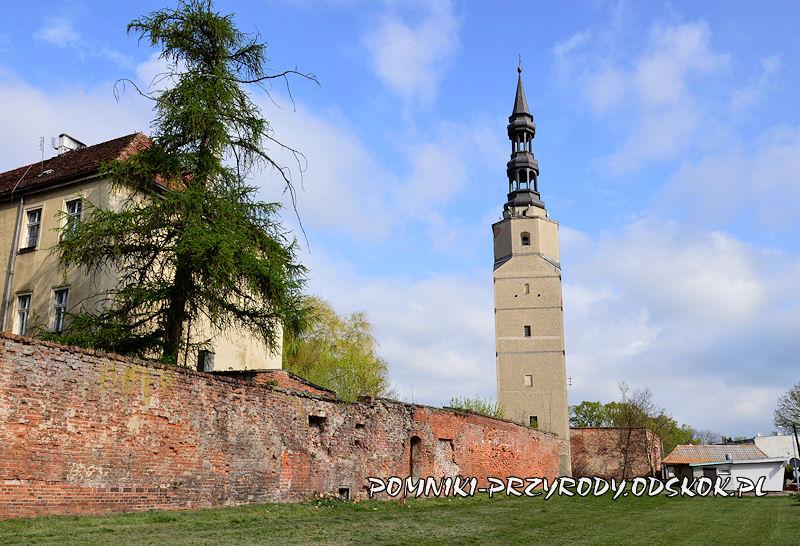 Bierutów - wieża zamkowa w ciągu murów obronnych miasta