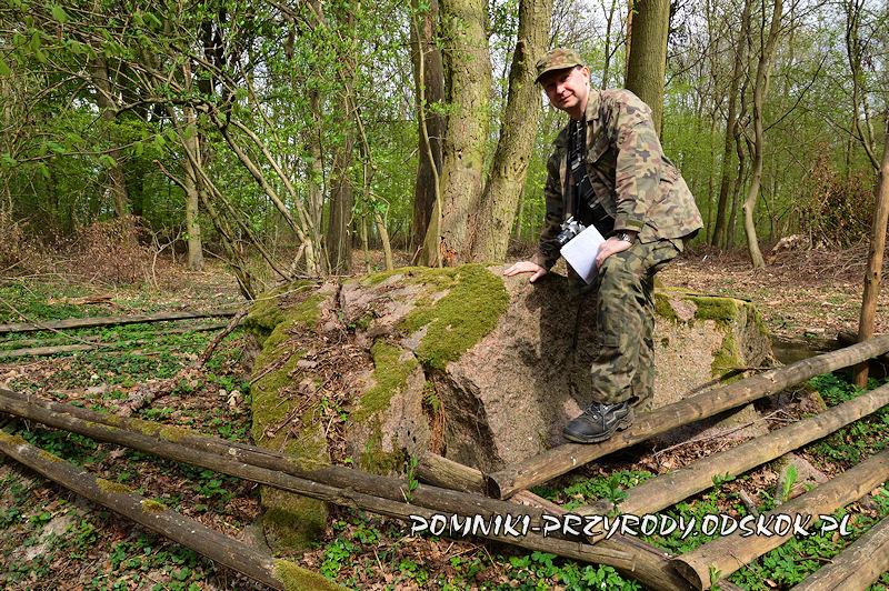 Diabli Kamień w gminie Wołczyn