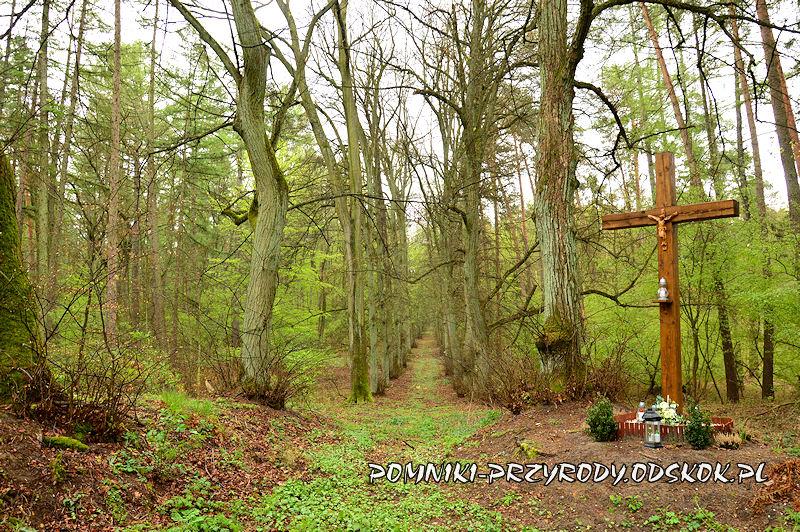 20. Krzyż w przebiegu leśnej alei lipowe w Gręboszowie