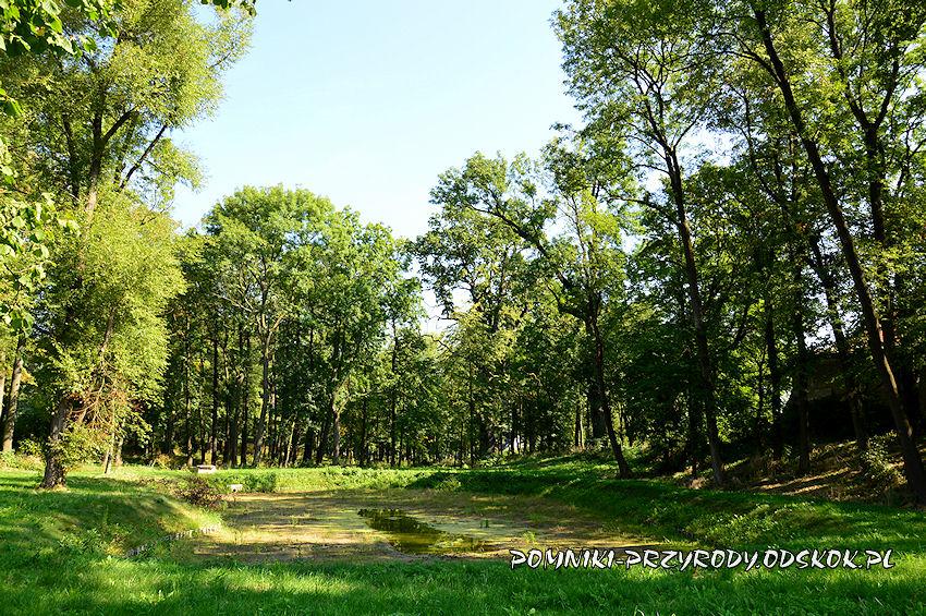 sadzawka w gorzanowskim parku