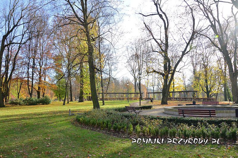 Park Miejski w Sycowie - fontanna i pergola
