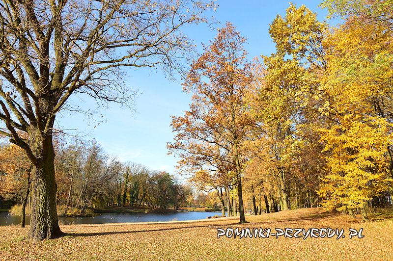 Park Miejski w Sycowie jesienią