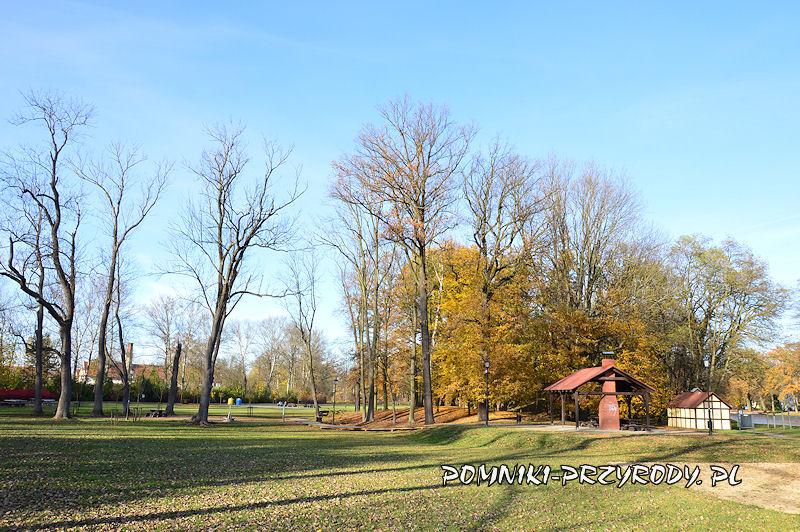 Park Miejski w Sycowie po sezonie wegetacyjnym