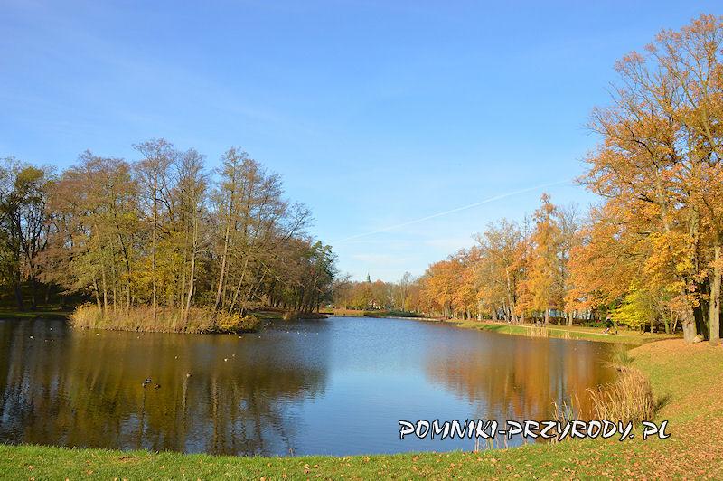Park Miejski w Sycowie - staw parkowy
