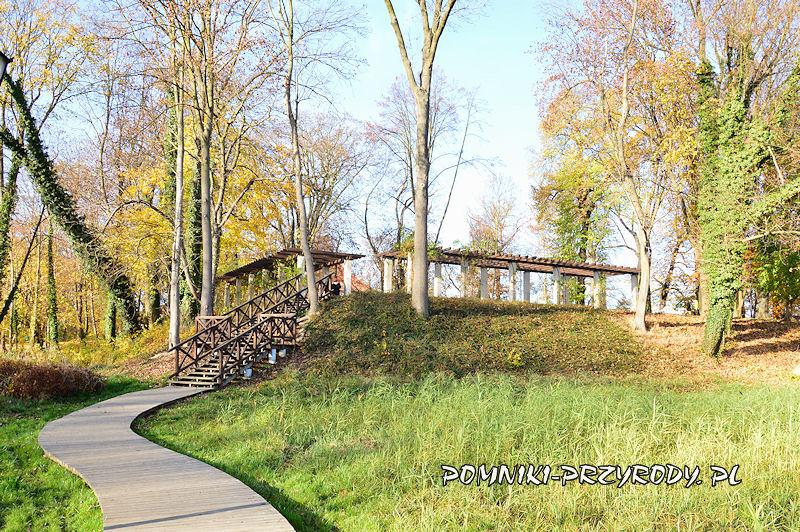 pergola w Parku Miejskim w Sycowie