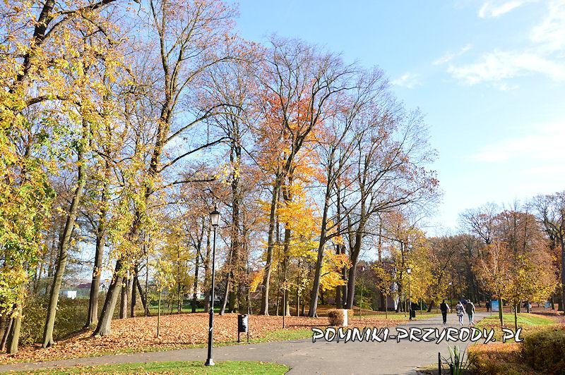 północna część Parku Miejskiego w Sycowie