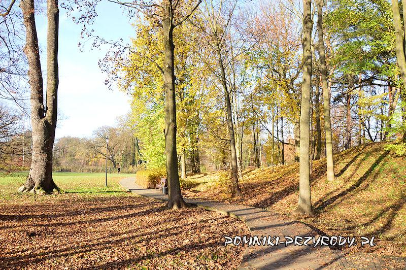 zachodnia część Parku Miejskiego w Sycowie