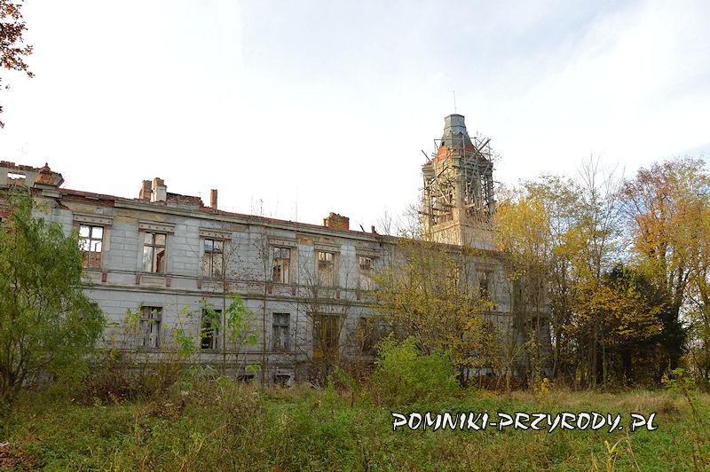 pałac w Stradomii Wierzchniej - widok od strony parku