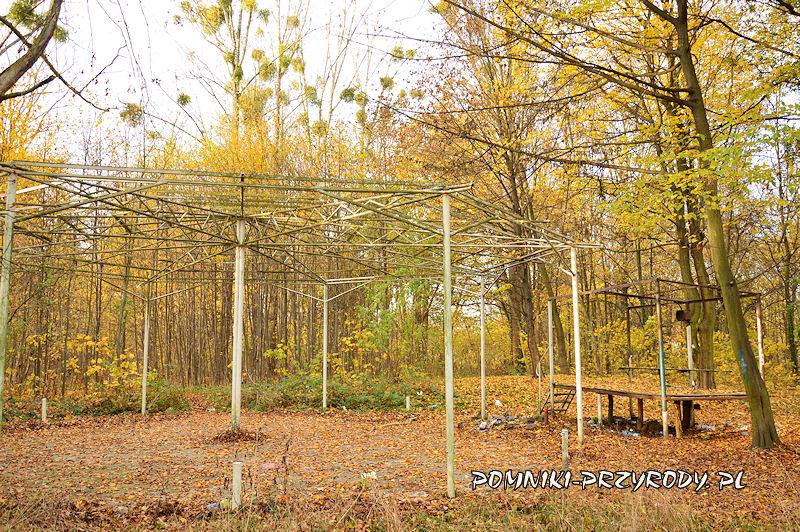 scena i fragment zadaszenia w parku przypałacowym w Stradomii Wierzchniej