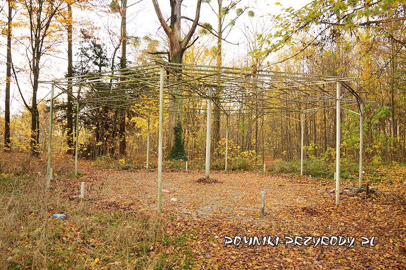 szkielet zadaszenia w parku przypałacowym w Stradomii Wierzchniej