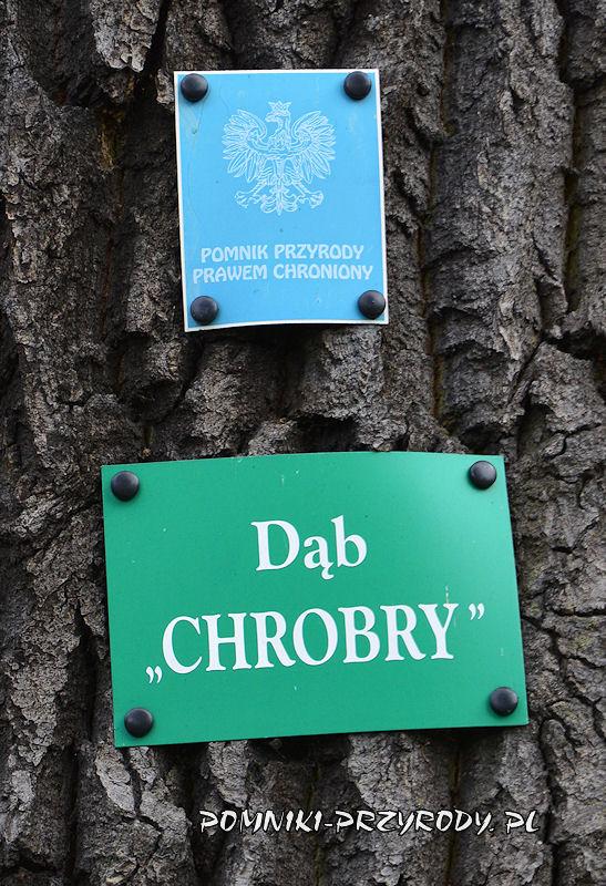 Nowogrodziec - tabliczki na pomnikowym dębie