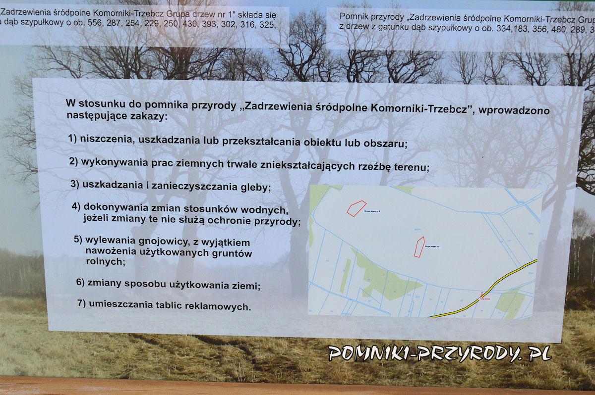 mapa sytuacyjna pomnika przyrody